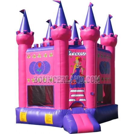Inflatable Bouncer 1011