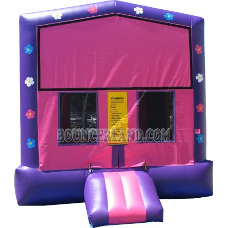 Inflatable Bouncer 1029
