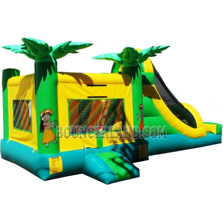 Inflatable Commercial Bouncy Combo 3043