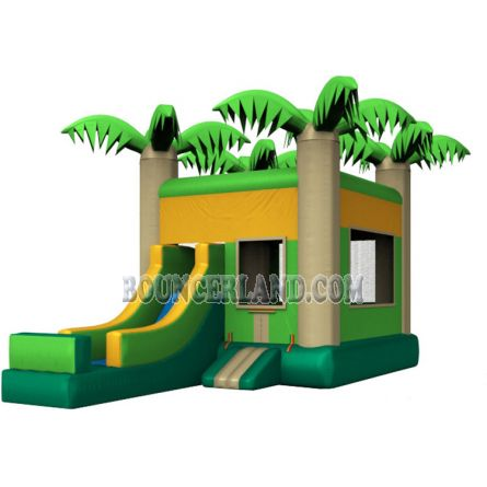 Inflatable Commercial Bouncy Combo 3060
